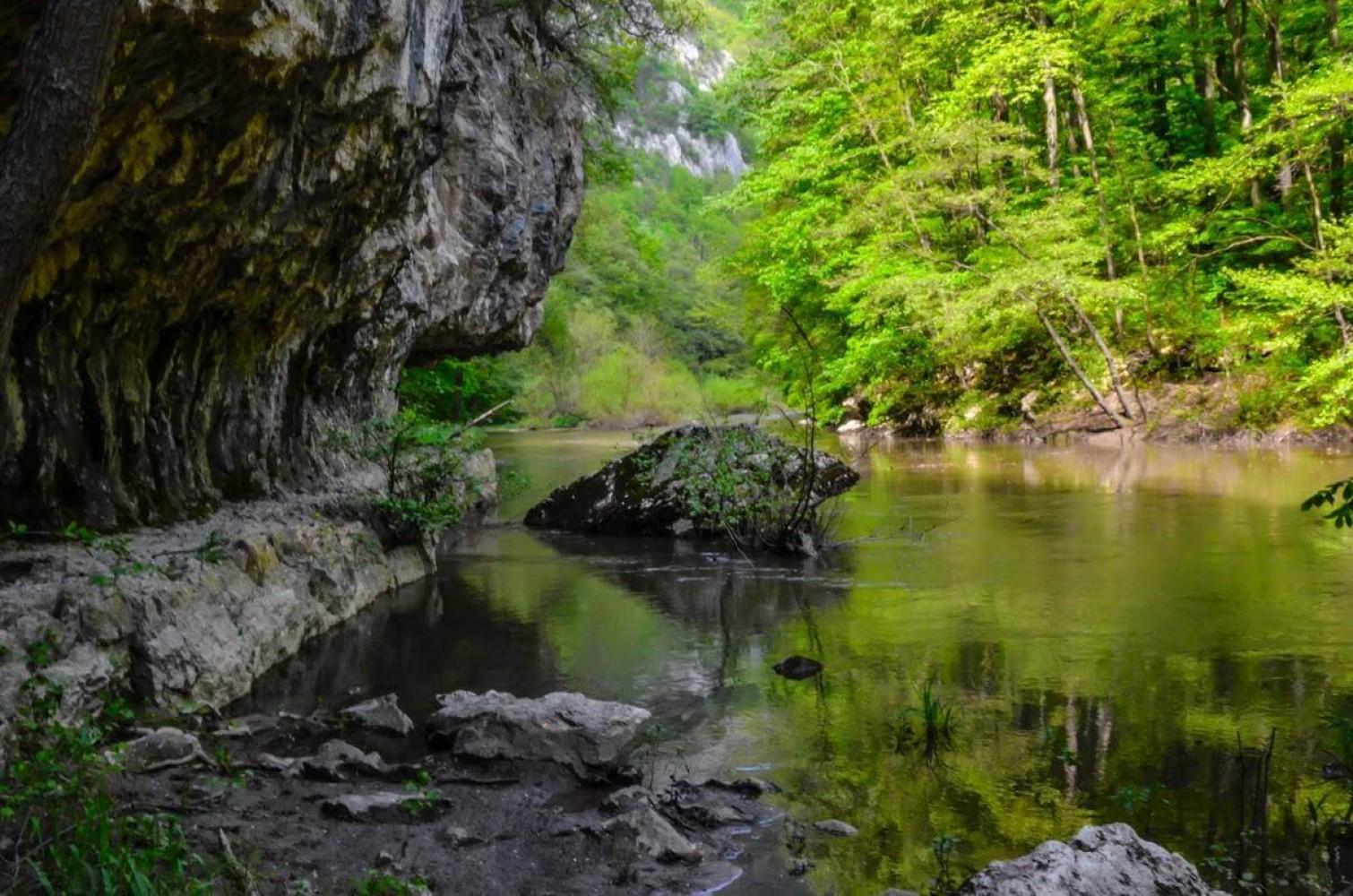 The Blue Wonders of Cheile Nerei-Beusnita National Park   Cheile Nerei